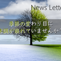 news letter no.12