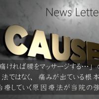 newsletter no.15