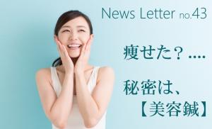 newsletter43