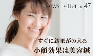 newsletter47
