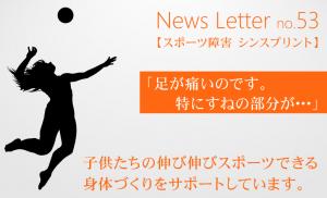 newsletter53