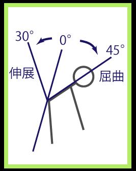 伸展の図解