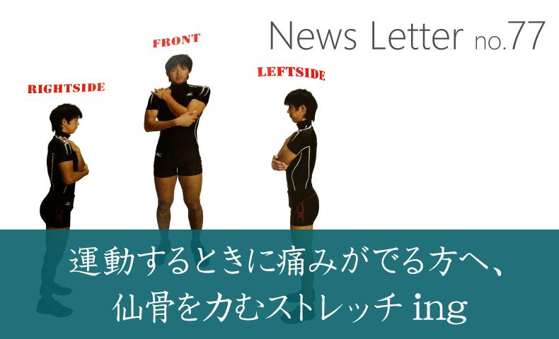 ニュースレター77号